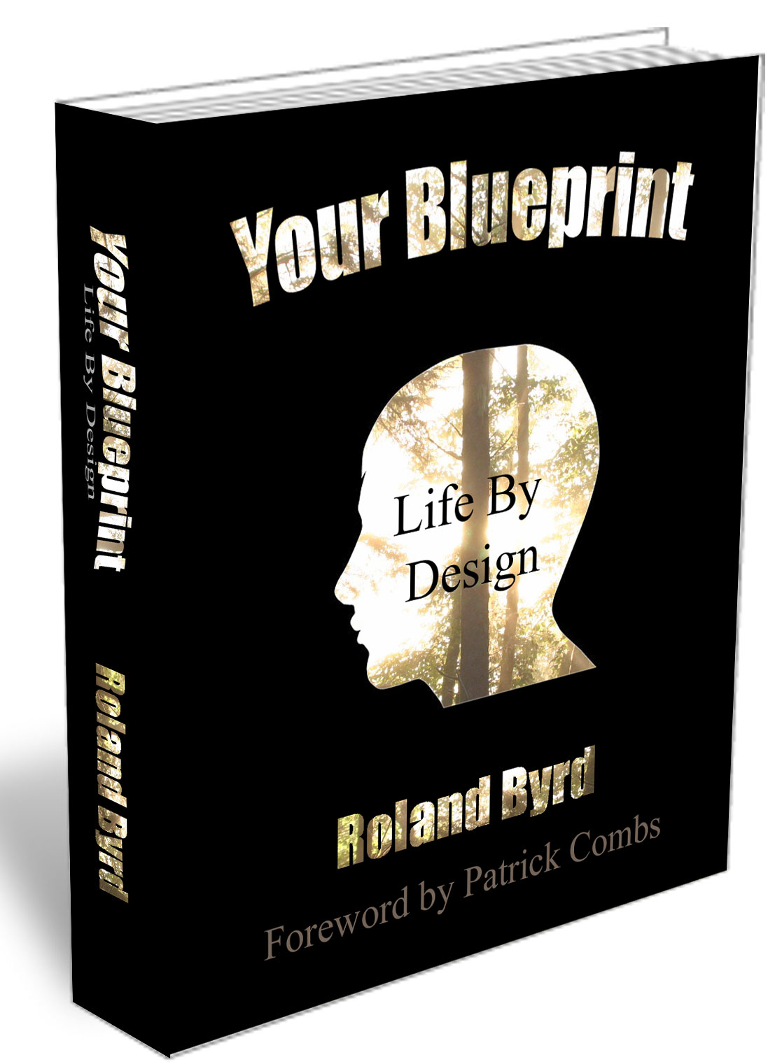 Your blueprint life by design archives roland byrd perception is personal reality malvernweather Gallery