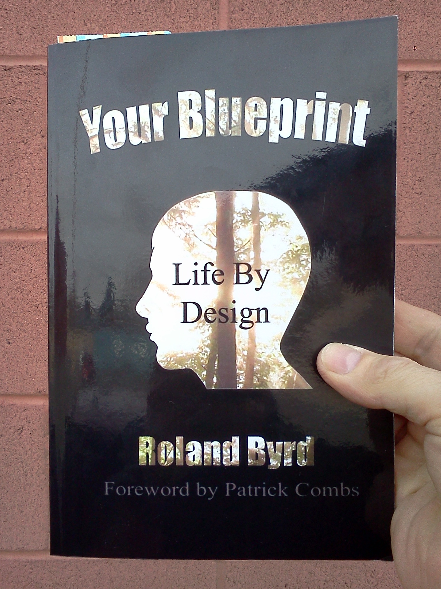 What is your blueprint life by design roland byrd your blueprint life by design malvernweather Images