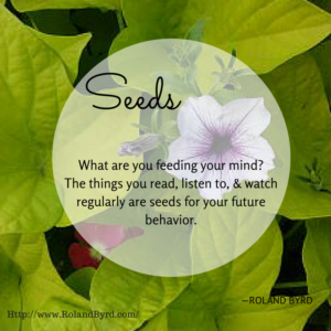 Seeds- What are you feeding your mind-