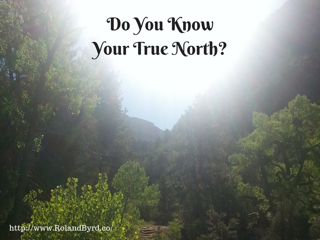 Do You Know Your True North?
